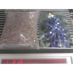 Bluebonnet 1/2 pound