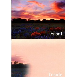 07164-Indian Sky notecard with sunset and Texas wildflowers