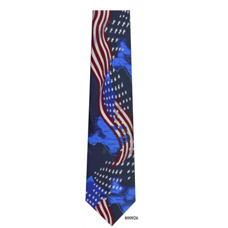 600-003-Patriotic Texas tie