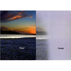08169-Misty Morning Sunrise greeting card