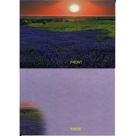 09171 - Bluebonnets at Sunrise greeting card