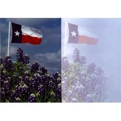 9666-Texas flag in bluebonnets